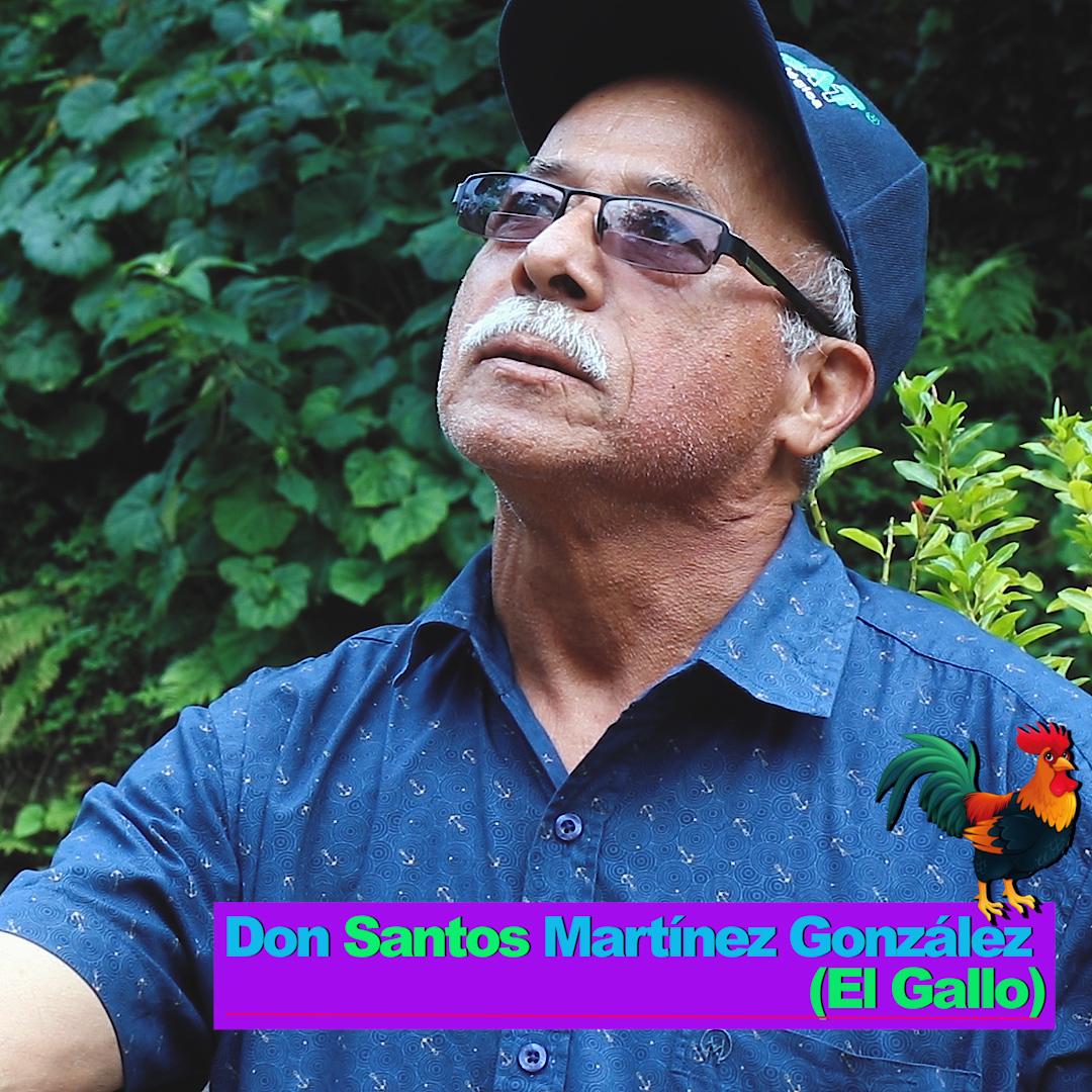 Don Santos Martínez González